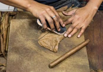 Man preparing cuban cigars
